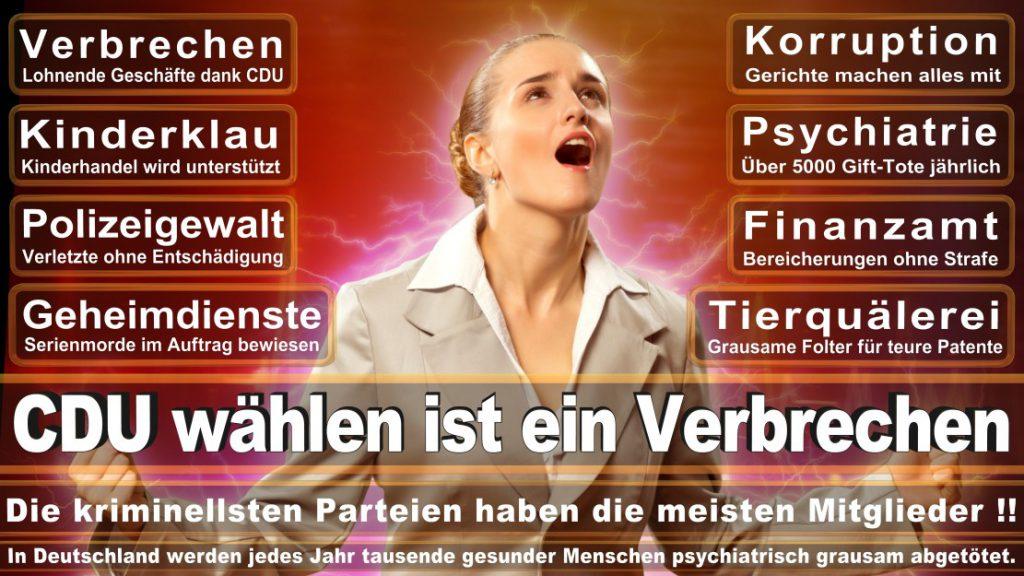 Wahlplakate-2017-CDU (1)