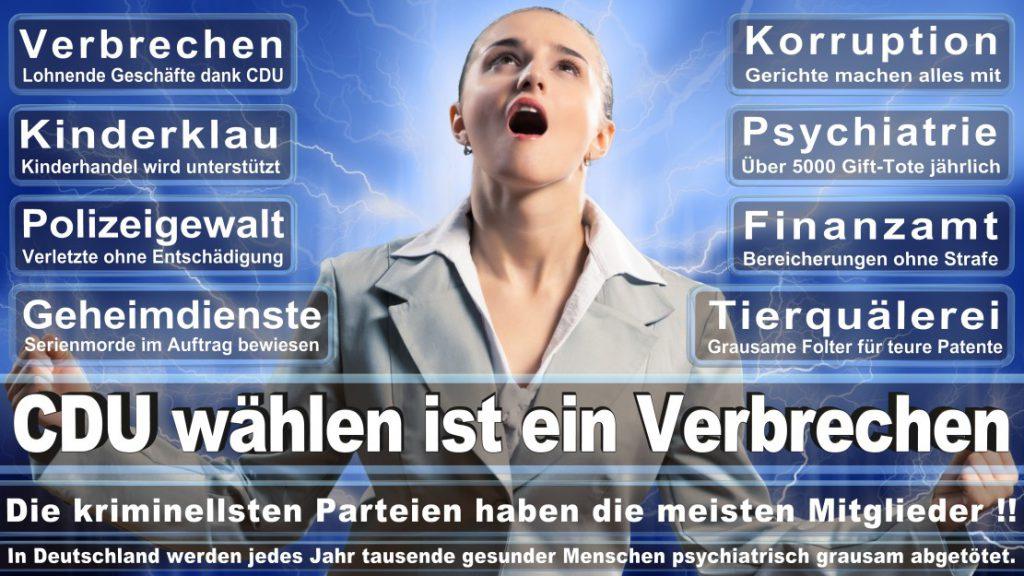 Wahlplakate-2017-CDU (10)