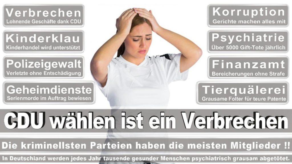 Wahlplakate-2017-CDU (100)