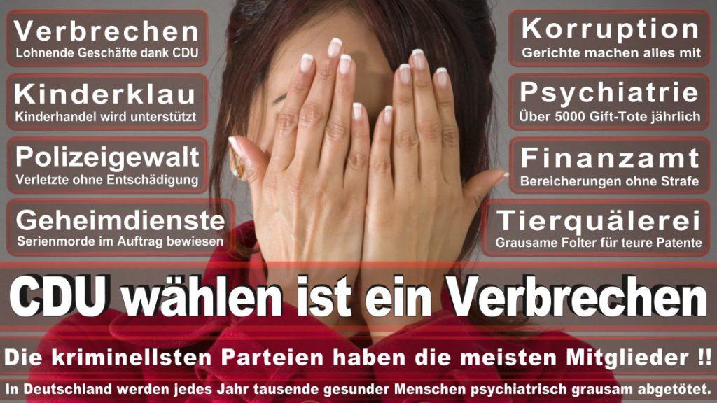 Wahlplakate-2017-CDU (101)