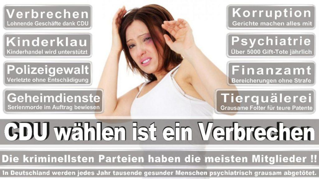 Wahlplakate-2017-CDU (102)