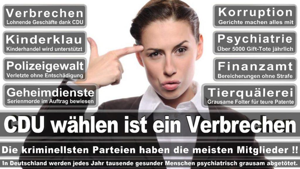 Wahlplakate-2017-CDU