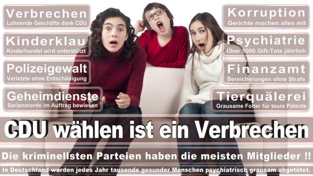 Wahlplakate-2017-CDU (104)