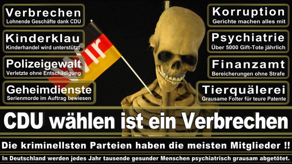 Wahlplakate-2017-CDU (107)