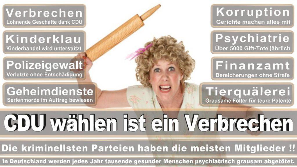 Wahlplakate-2017-CDU (108)