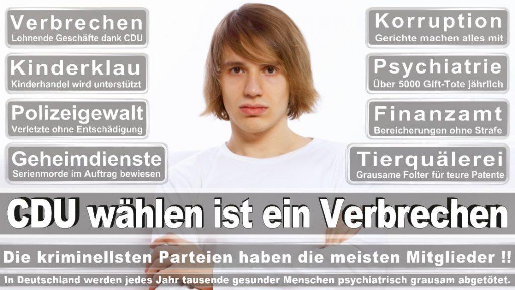 Wahlplakate-2017-CDU (11)