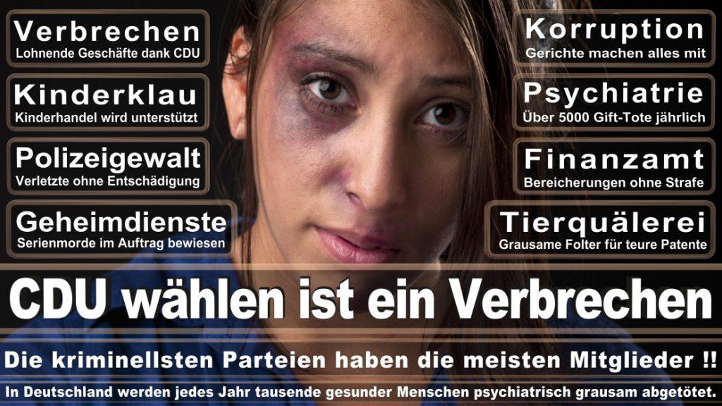 Wahlplakate-2017-CDU (110)