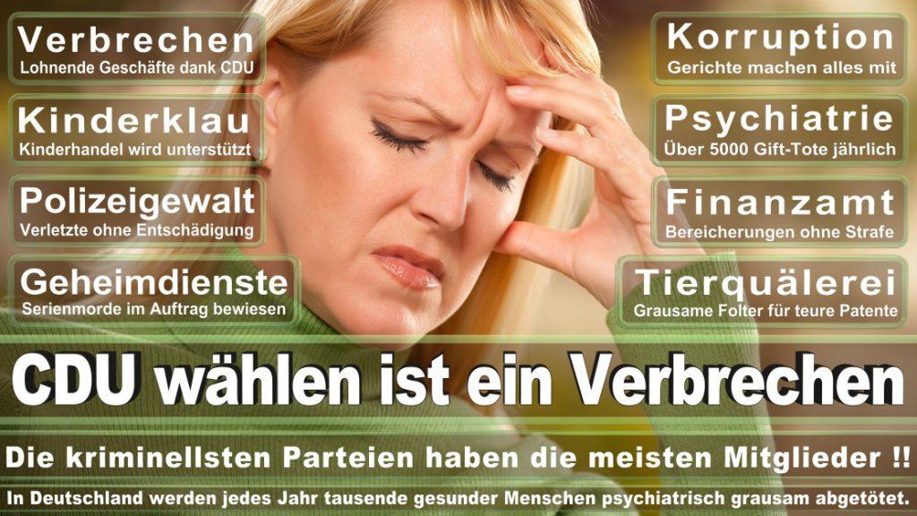Wahlplakate-2017-CDU (111)