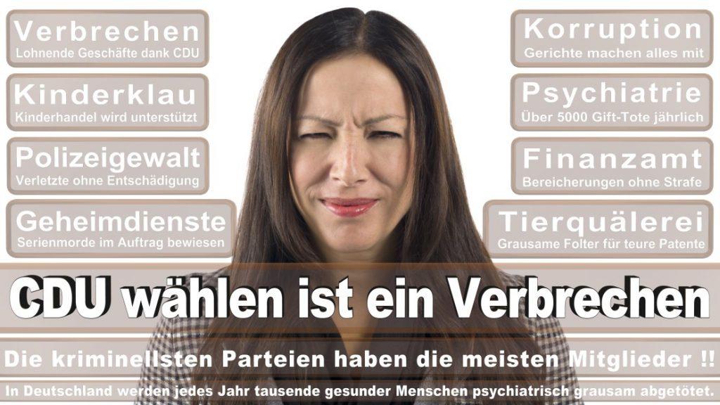 Wahlplakate-2017-CDU (112)