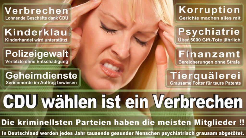 Wahlplakate-2017-CDU (113)