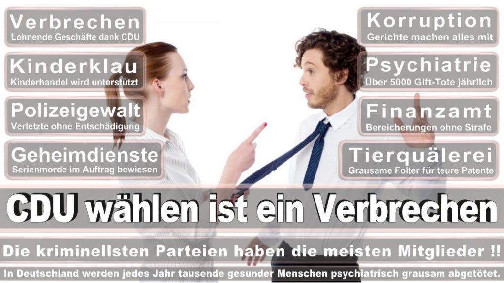 Wahlplakate-2017-CDU (114)