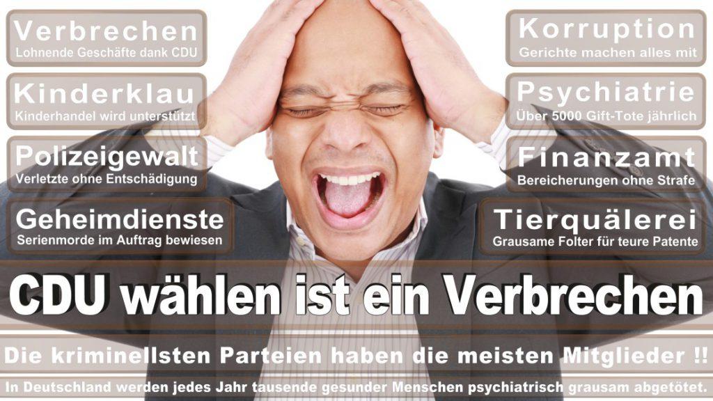 Wahlplakate-2017-CDU (115)