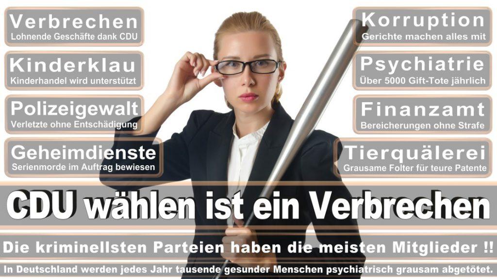 Wahlplakate-2017-CDU (116)