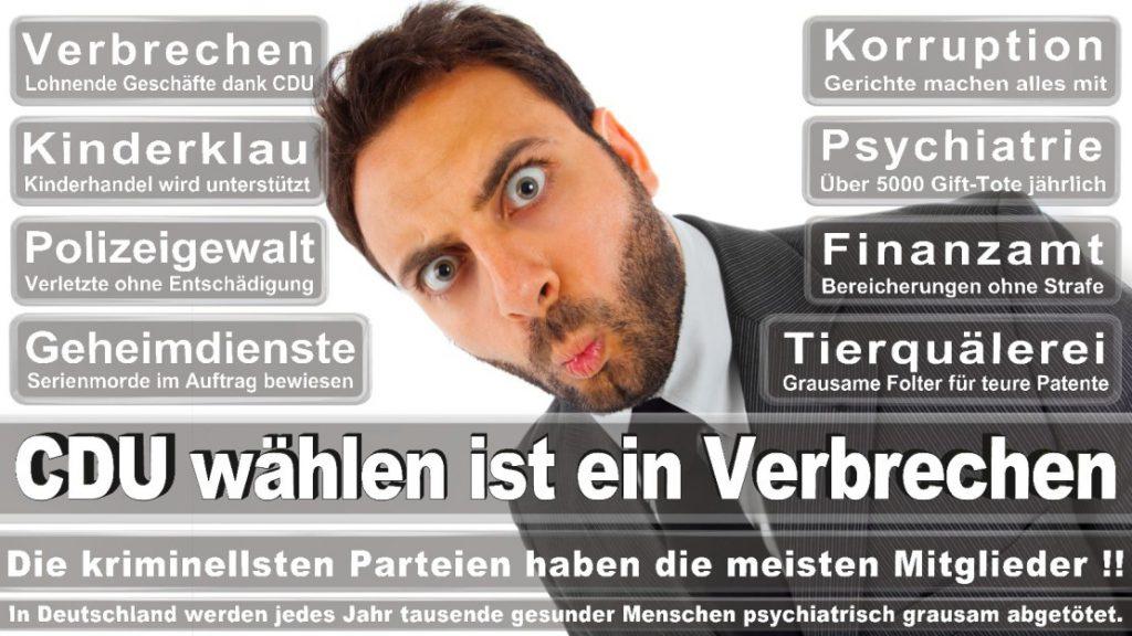 Wahlplakate-2017-CDU (117)