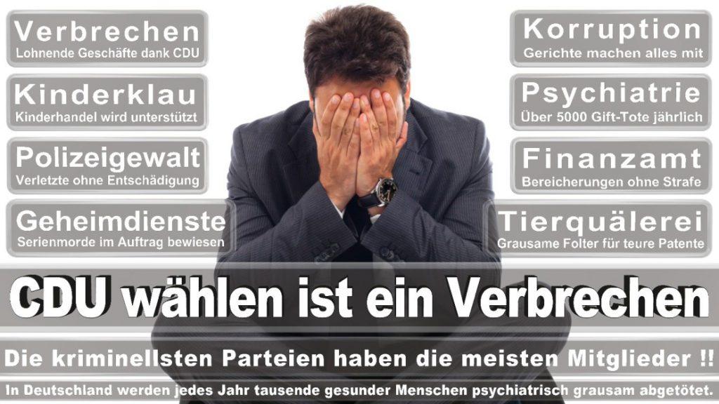 Wahlplakate-2017-CDU (118)