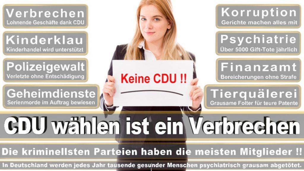 Wahlplakate-2017-CDU (119)