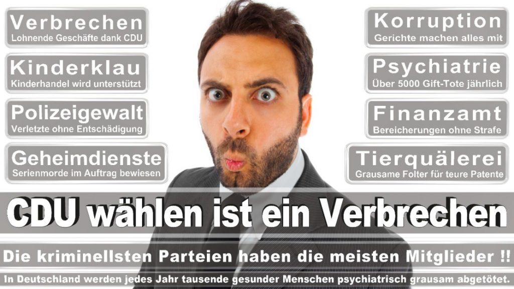 Wahlplakate-2017-CDU (12)