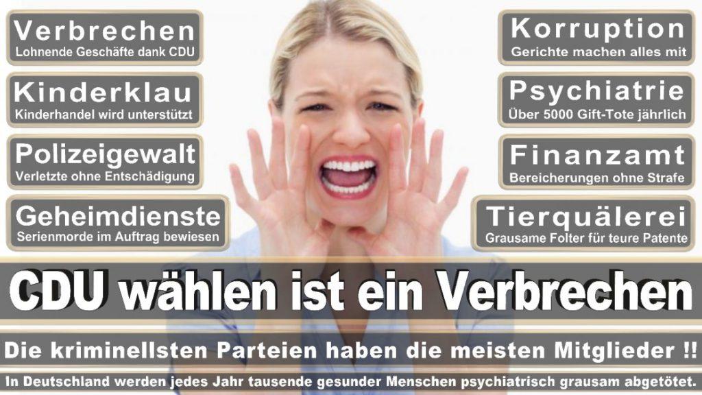 Wahlplakate-2017-CDU (120)