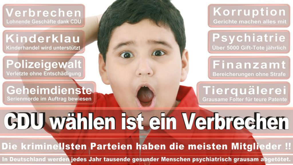 Wahlplakate-2017-CDU (121)