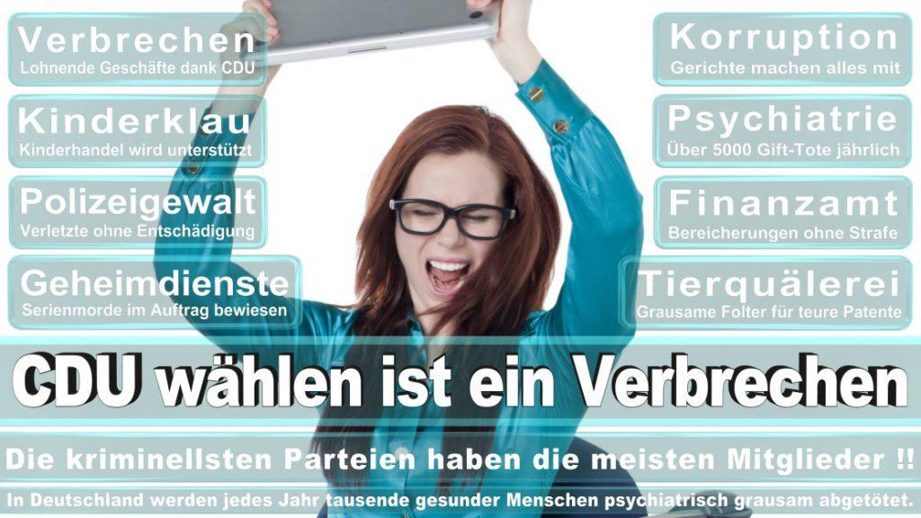 Wahlplakate-2017-CDU (122)