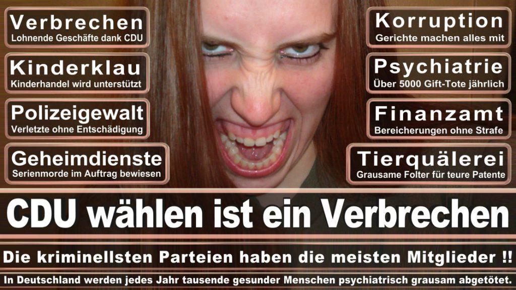 Wahlplakate-2017-CDU (123)
