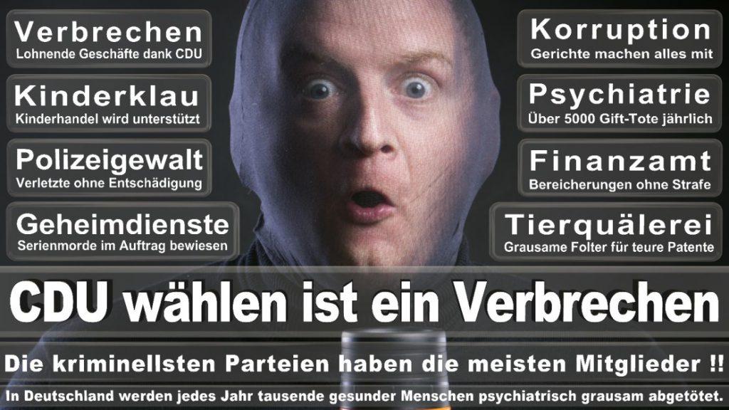 Wahlplakate-2017-CDU (124)