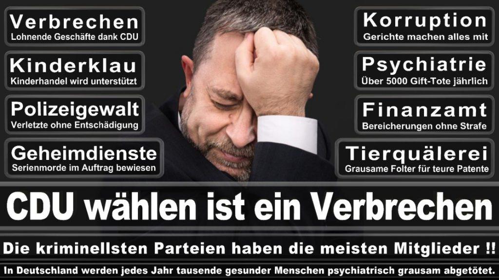 Wahlplakate-2017-CDU (125)