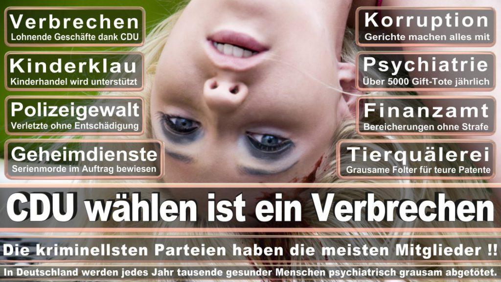 Wahlplakate-2017-CDU (126)