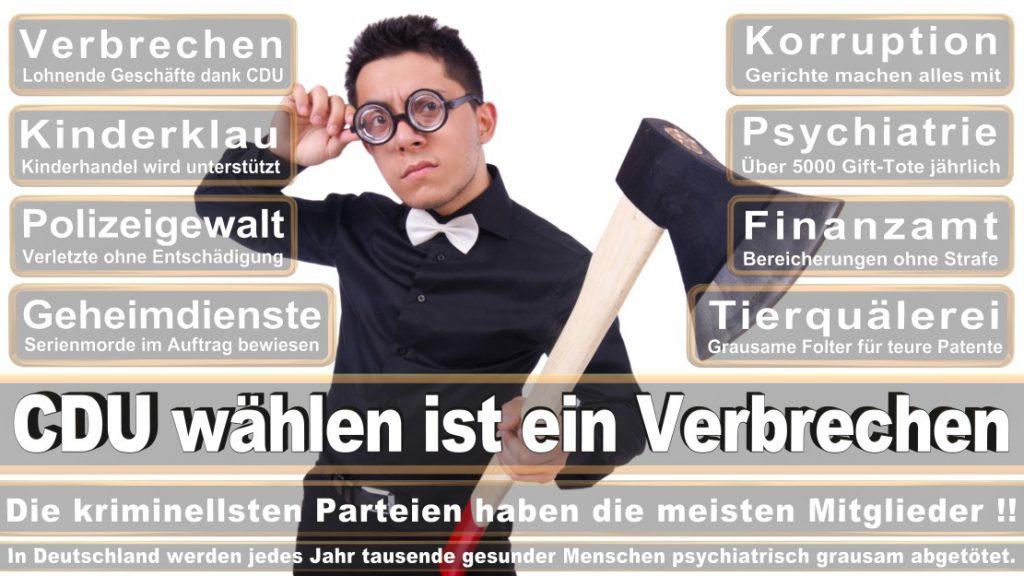 Wahlplakate-2017-CDU (127)