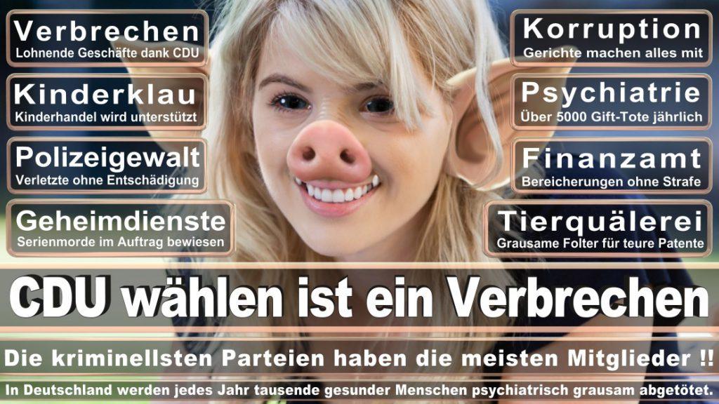Wahlplakate-2017-CDU (129)