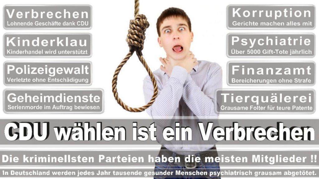 Wahlplakate-2017-CDU (13)
