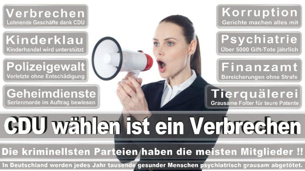 Wahlplakate-2017-CDU (130)