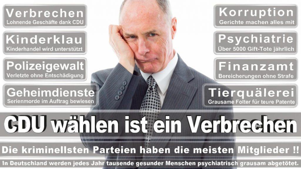 Wahlplakate-2017-CDU (131)