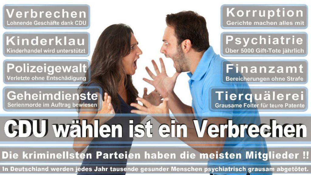 Wahlplakate-2017-CDU (132)