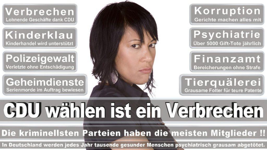Wahlplakate-2017-CDU (134)