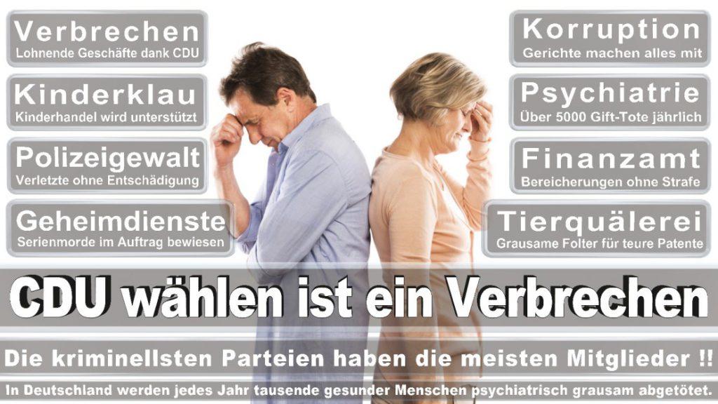 Wahlplakate-2017-CDU (135)