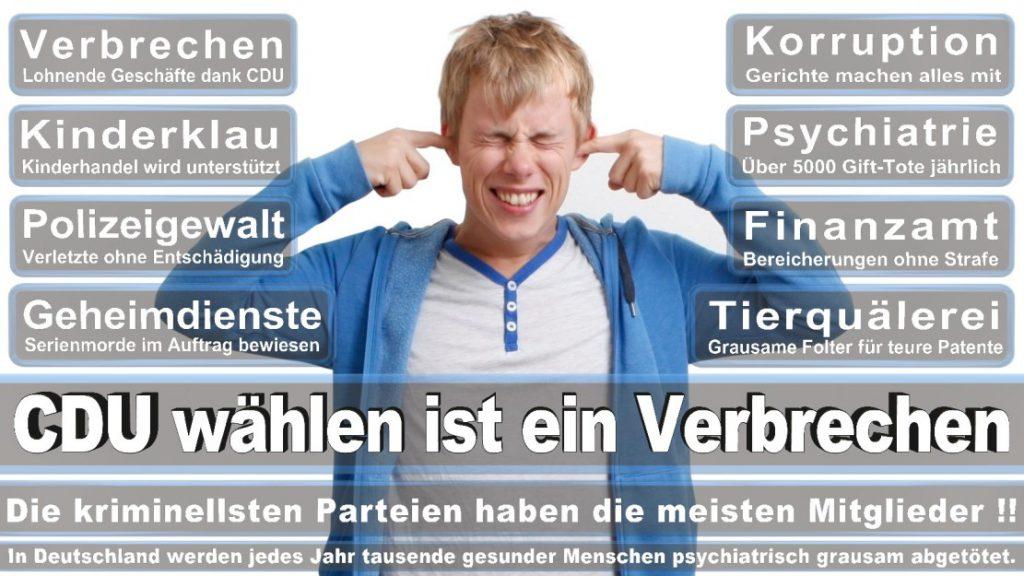 Wahlplakate-2017-CDU (136)