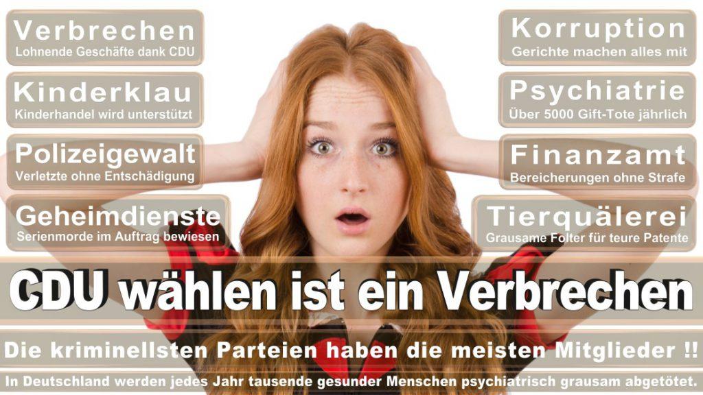 Wahlplakate-2017-CDU (14)