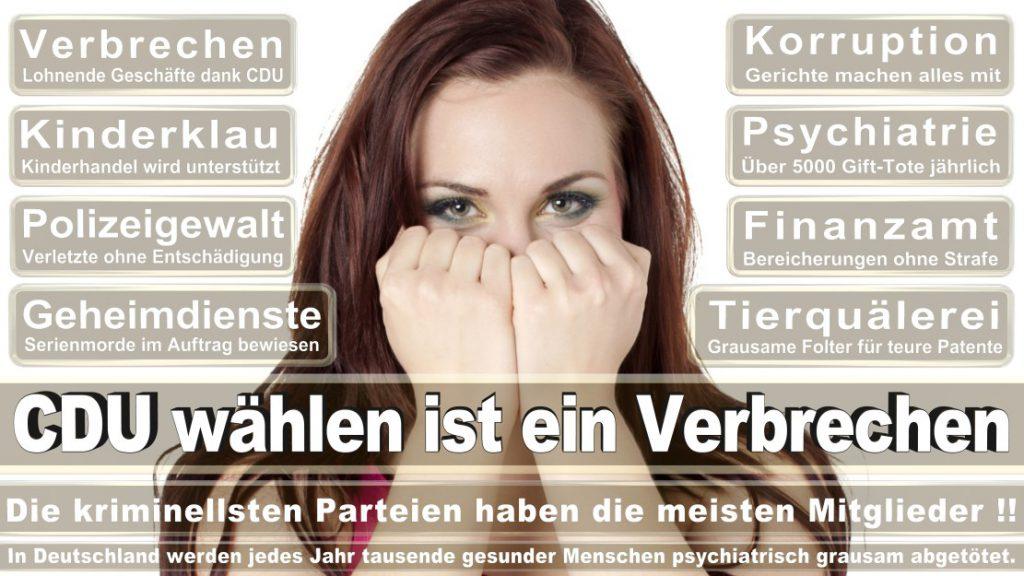 Wahlplakate-2017-CDU (140)