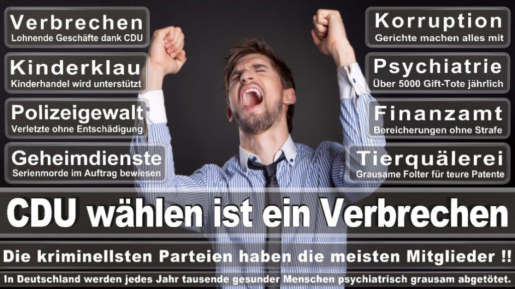 Wahlplakate-2017-CDU (142)
