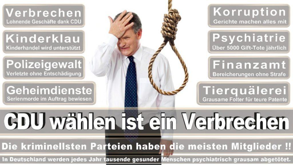 Wahlplakate-2017-CDU (143)