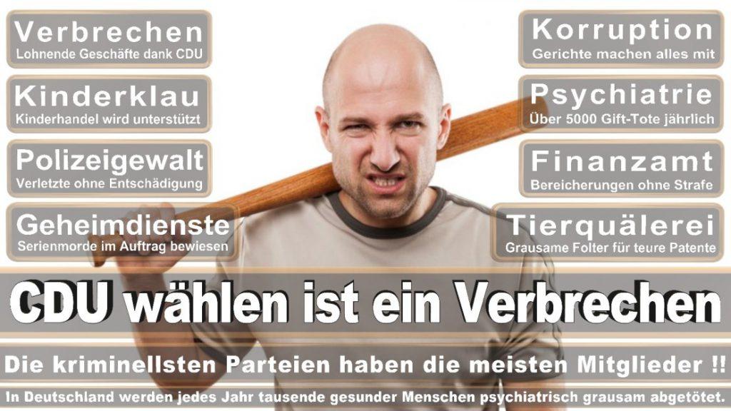 Wahlplakate-2017-CDU (144)