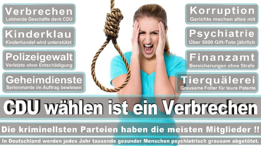 Wahlplakate-2017-CDU (145)