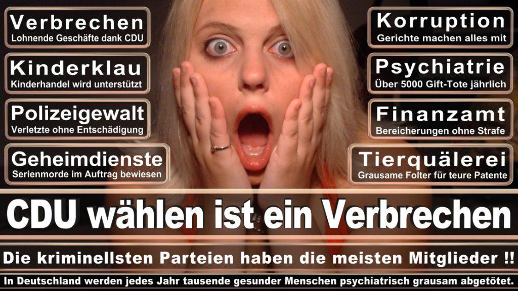 Wahlplakate-2017-CDU (146)