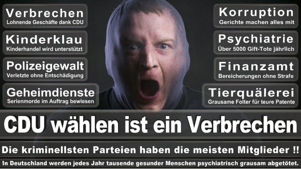 Wahlplakate-2017-CDU (147)