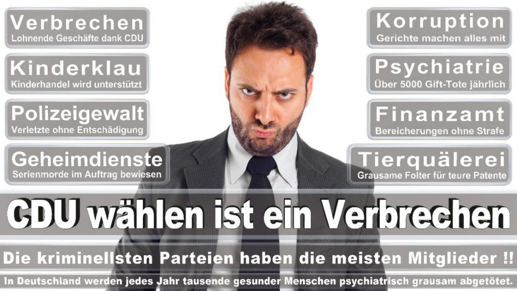 Wahlplakate-2017-CDU (148)