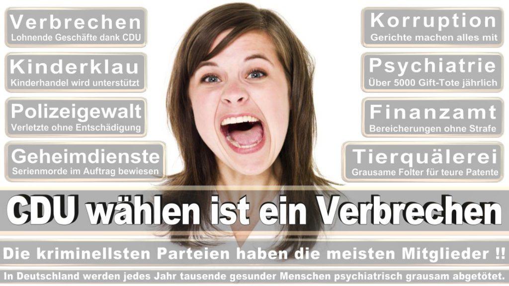 Wahlplakate-2017-CDU (149)