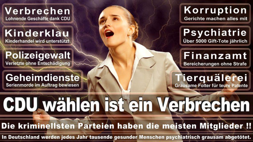Wahlplakate-2017-CDU (15)