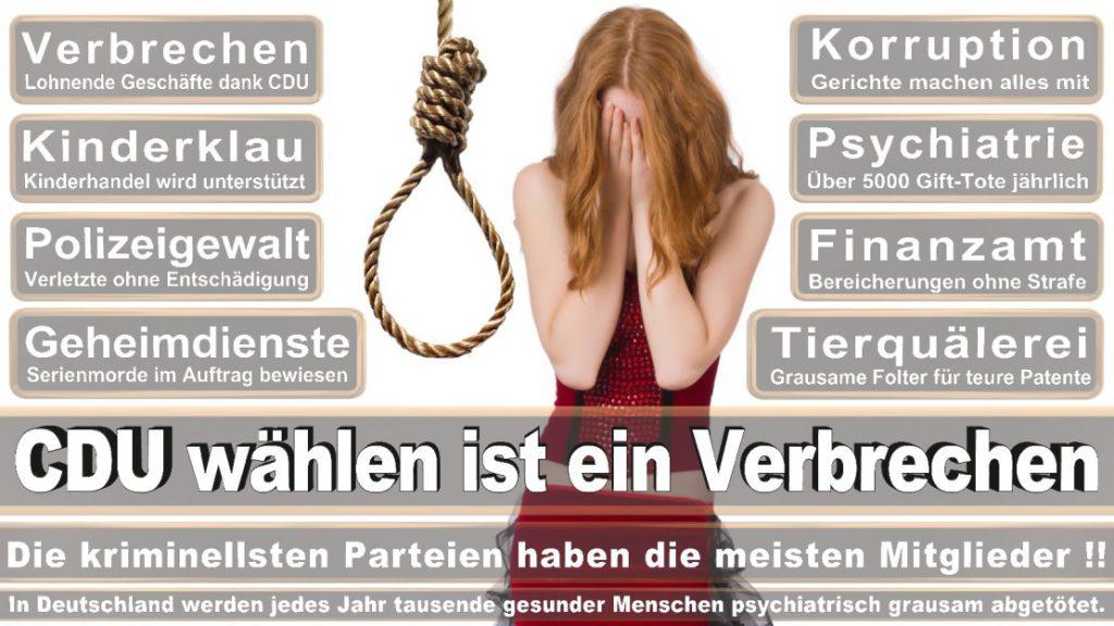 Wahlplakate-2017-CDU (150)
