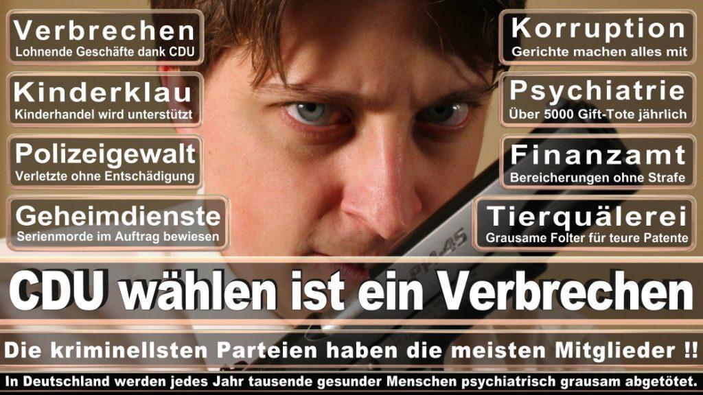 Wahlplakate-2017-CDU (151)